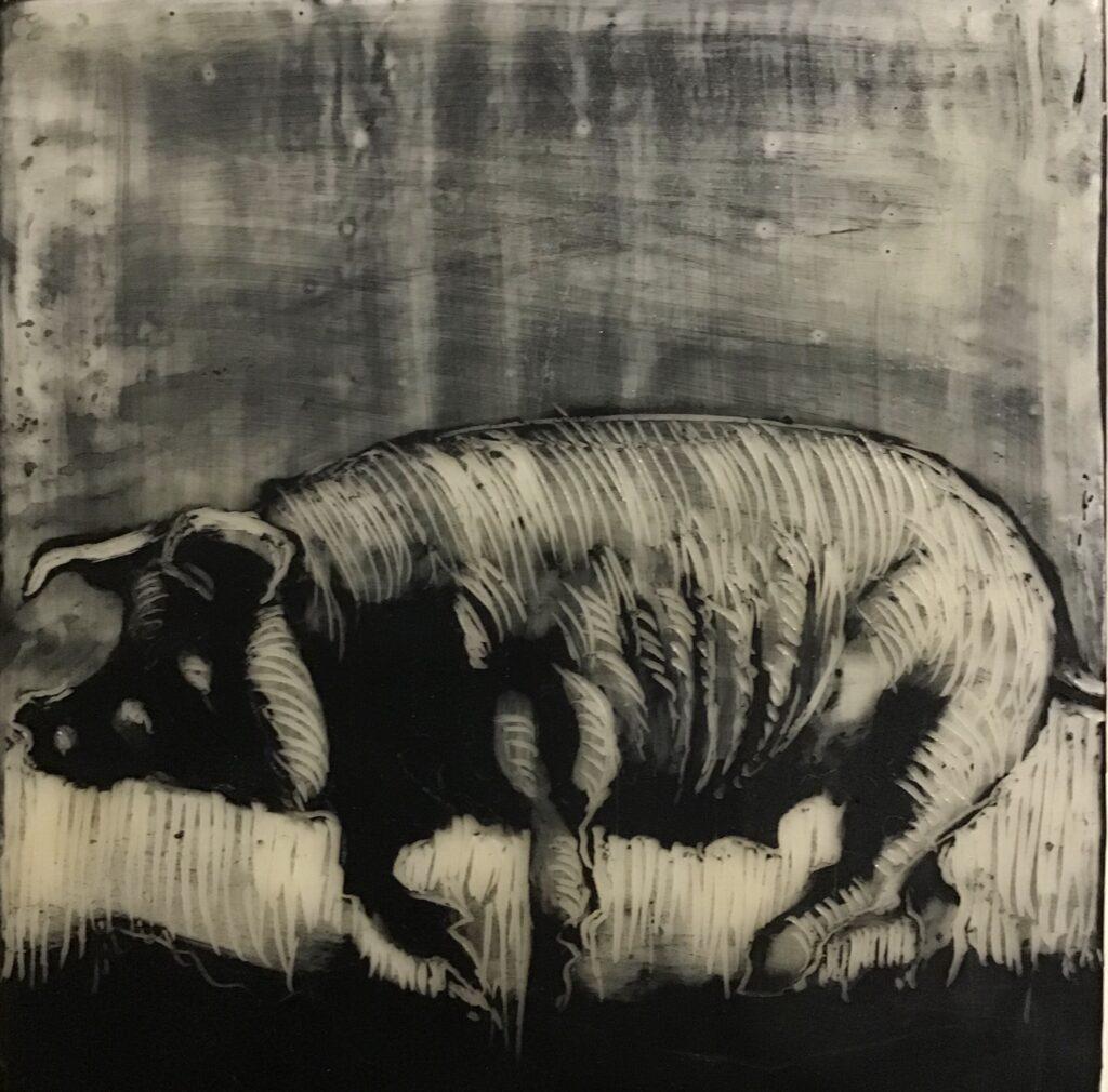 The work of Kathryn Drysdale